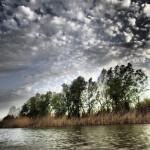 Весенняя рыбалка на базе «Нерестина», или Майские заметки натуралиста